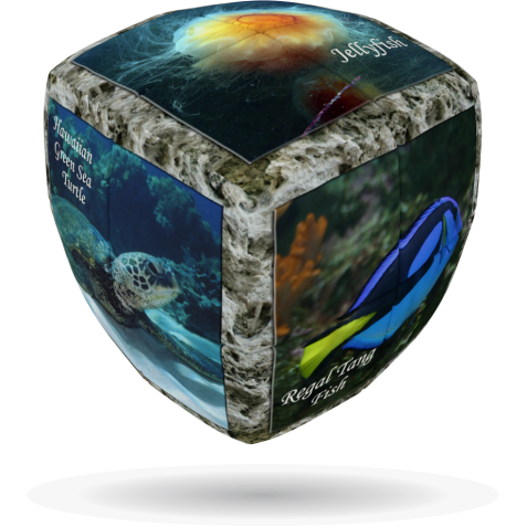 Sea World - V-CUBE 2 Pillow