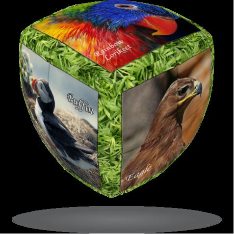 Unique Birds - V-CUBE 2 Pillow