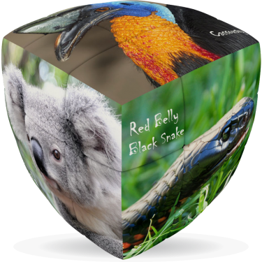 Australian Animals - V-CUBE 3 Pillow