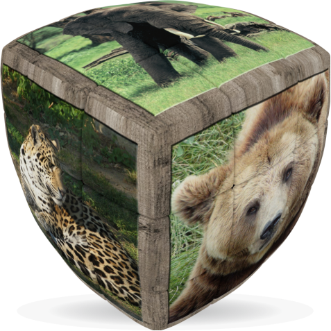 Wild Animals - V-CUBE 3 Pillow
